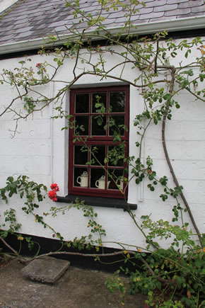 Tea & Garden Rooms / An Fear Gorta Window